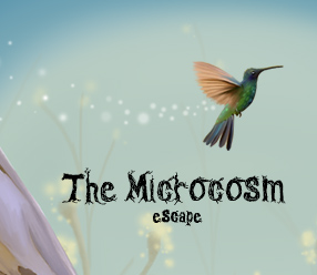 The Microcosm Escape